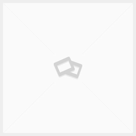 Нуклеирующая добавка CO-PLAS Form PBT 01